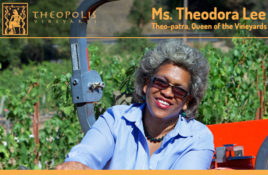 Theopolis Vineyards Featured Image