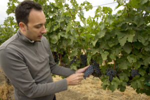Juan Muñoz-Oca, head winemaker, Columbia Crest Winery, Horse Heaven Hills, Washington